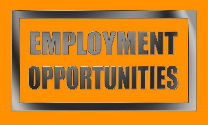 nikebiz com job application